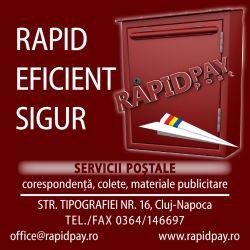 rapidpay_250x250px-mic
