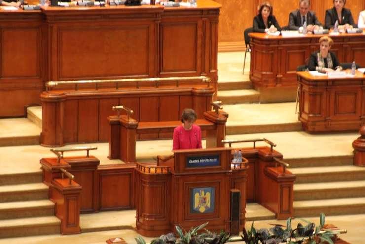 principesa_margareta_parlament_romania_tara_inteligenta